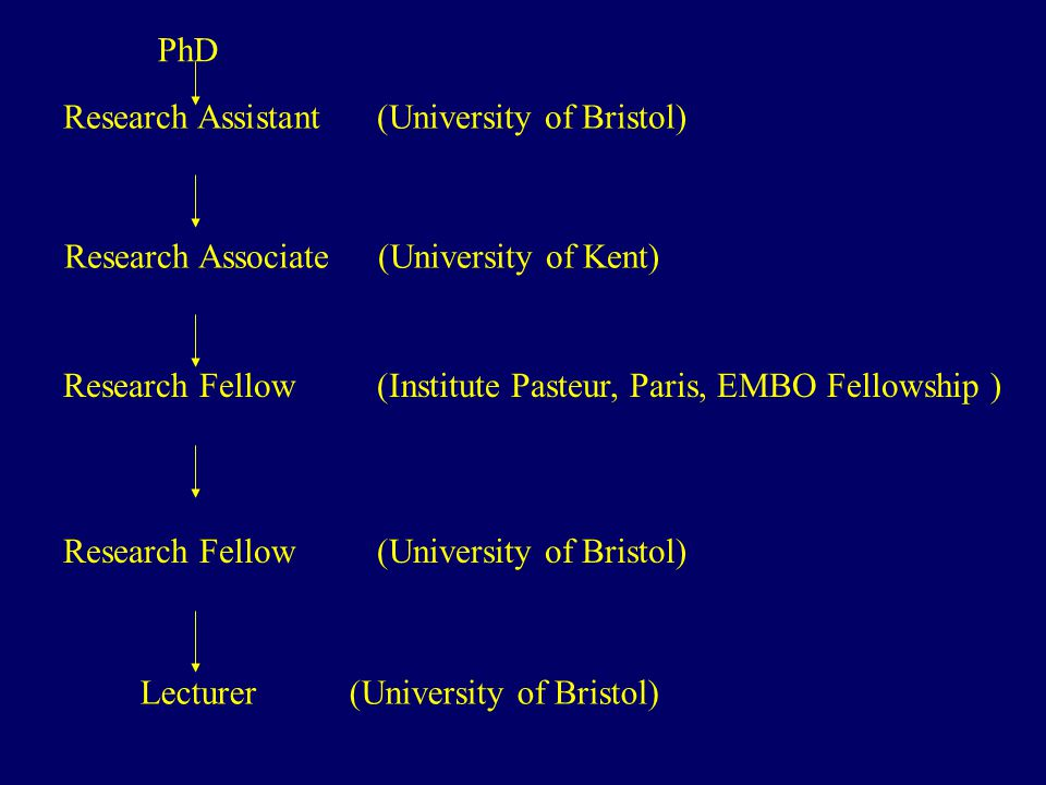 PhD Research Assistant(University of Bristol) Research Associate(University of Kent) Research Fellow(Institute Pasteur, Paris, EMBO Fellowship ) Research Fellow(University of Bristol) Lecturer(University of Bristol)