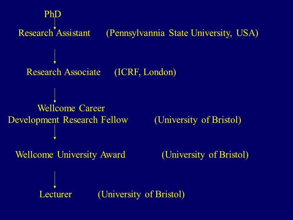 PhD Research Assistant(Pennsylvannia State University, USA) Research Associate(ICRF, London) Wellcome Career Development Research Fellow(University of Bristol) Wellcome University Award(University of Bristol) Lecturer(University of Bristol)