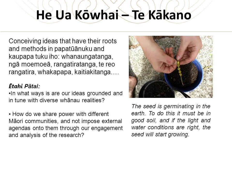 He Ua Kōwhai – Te Kākano Conceiving ideas that have their roots and methods in papatūānuku and kaupapa tuku iho: whanaungatanga, ngā moemoeā, rangatiratanga, te reo rangatira, whakapapa, kaitiakitanga….