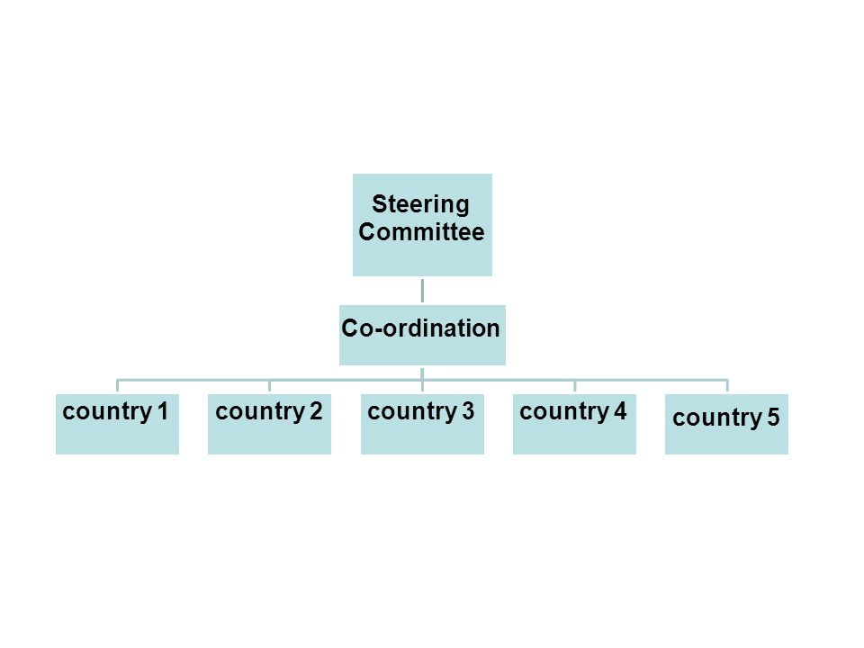 Steering Committee Co-ordination country 1country 2country 3country 4 country 5