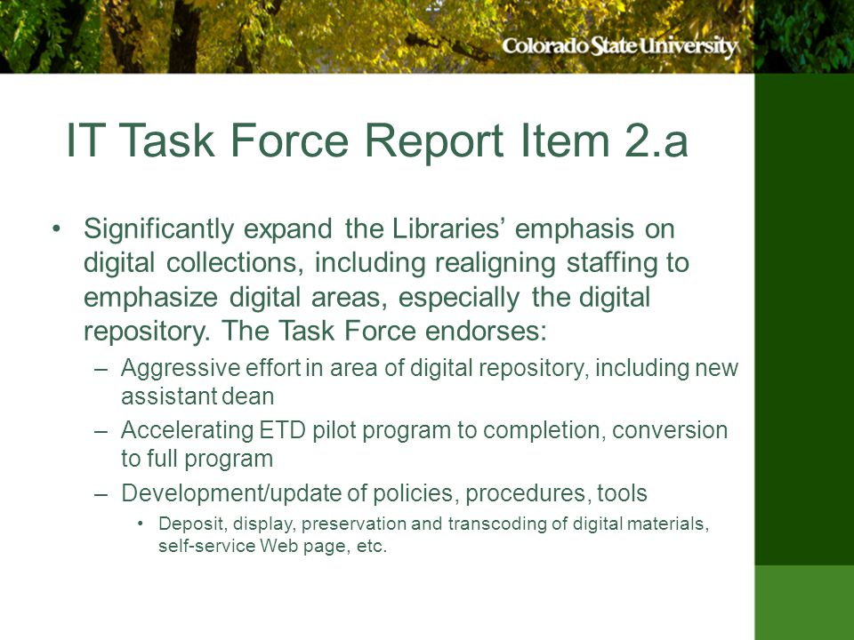 IT Task Force Report Item 2.a Significantly expand the Libraries' emphasis on digital collections, including realigning staffing to emphasize digital areas, especially the digital repository.