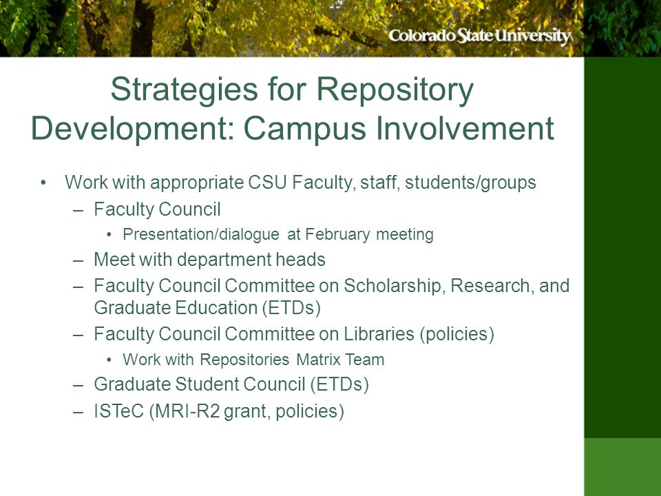 Strategies for Repository Development: Campus Involvement Work with appropriate CSU Faculty, staff, students/groups –Faculty Council Presentation/dialogue at February meeting –Meet with department heads –Faculty Council Committee on Scholarship, Research, and Graduate Education (ETDs) –Faculty Council Committee on Libraries (policies) Work with Repositories Matrix Team –Graduate Student Council (ETDs) –ISTeC (MRI-R2 grant, policies)