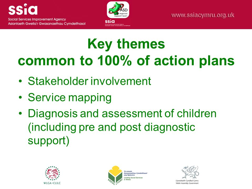 Key themes common to 100% of action plans Stakeholder involvement Service mapping Diagnosis and assessment of children (including pre and post diagnostic support)