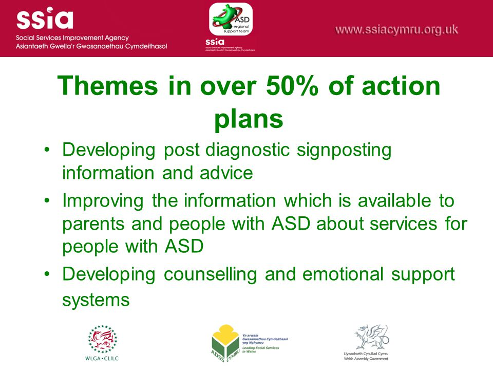 Themes in over 50% of action plans Developing post diagnostic signposting information and advice Improving the information which is available to paren