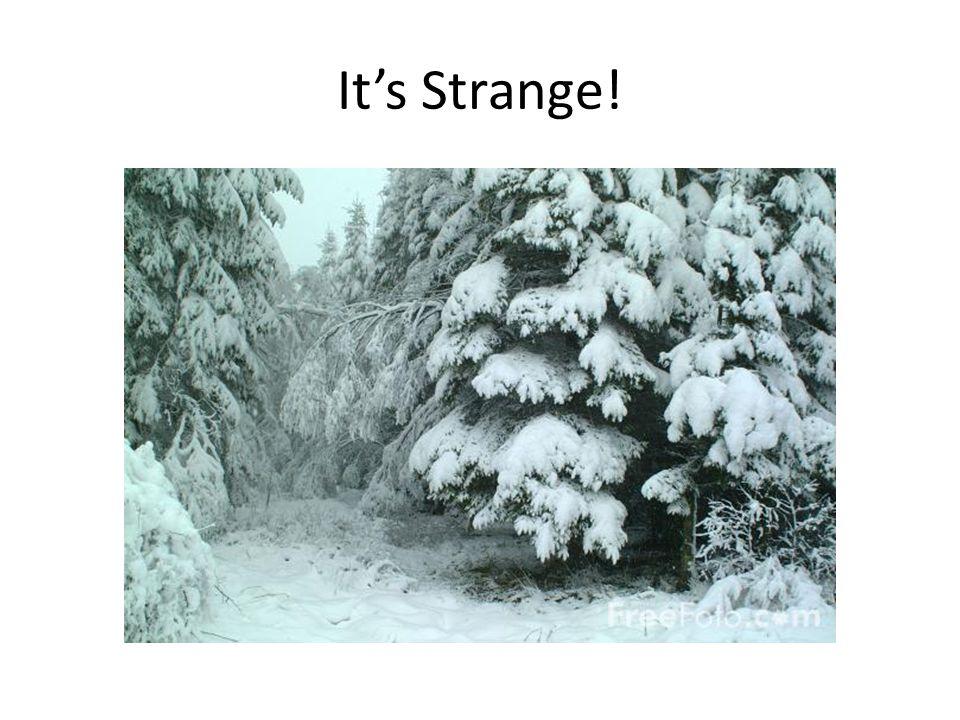It's Strange!