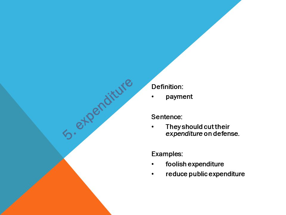 Definition: payment Sentence: They should cut their expenditure on defense. Examples: foolish expenditure reduce public expenditure 5. expenditure