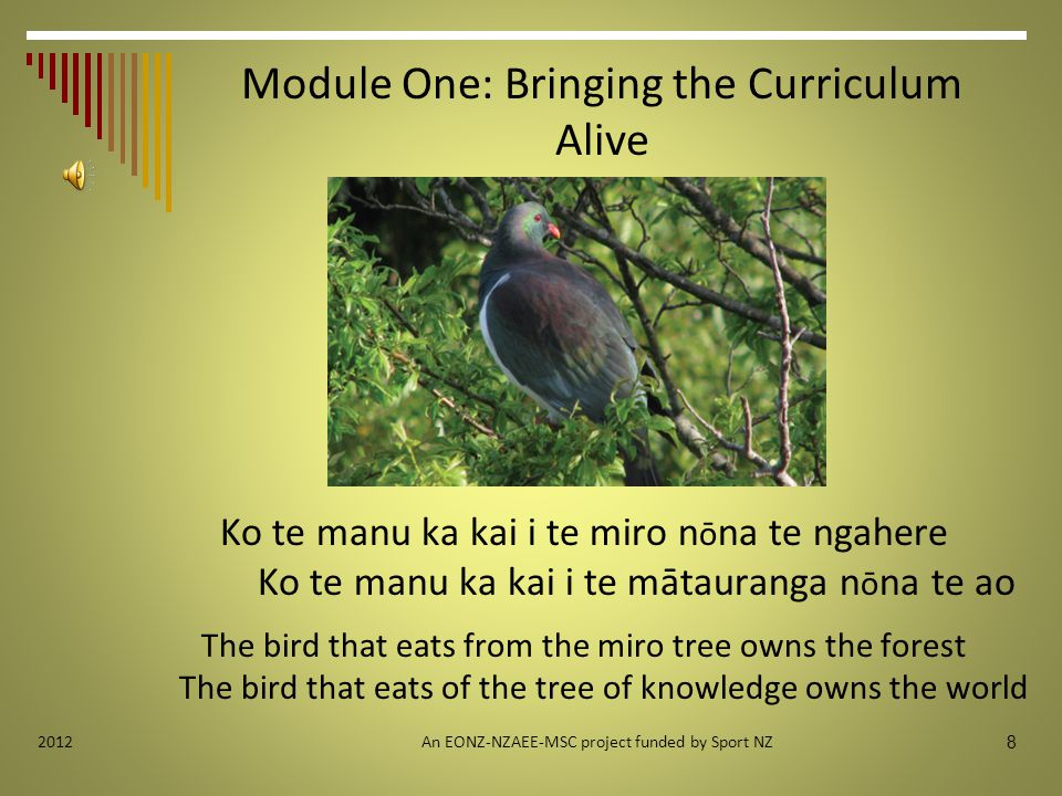 Module One: Bringing the Curriculum Alive Ko te manu ka kai i te miro n ō na te ngahere Ko te manu ka kai i te mātauranga n ō na te ao The bird that eats from the miro tree owns the forest The bird that eats of the tree of knowledge owns the world An EONZ-NZAEE-MSC project funded by Sport NZ 8 2012