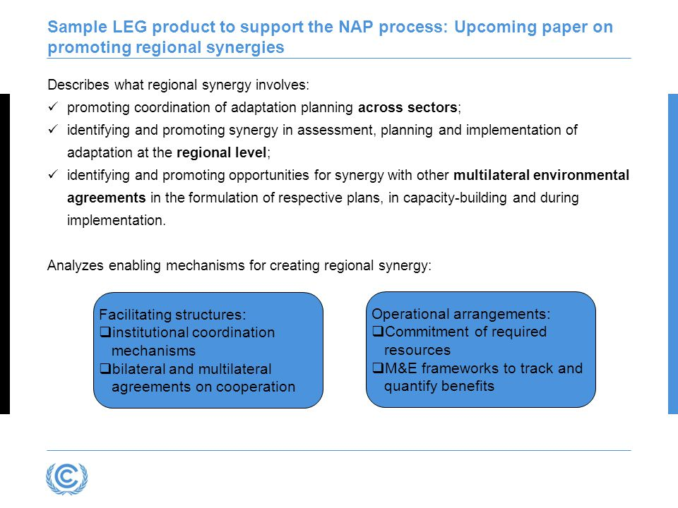 Sample LEG product to support the NAP process: Upcoming paper on promoting regional synergies Describes what regional synergy involves: promoting coordination of adaptation planning across sectors; identifying and promoting synergy in assessment, planning and implementation of adaptation at the regional level; identifying and promoting opportunities for synergy with other multilateral environmental agreements in the formulation of respective plans, in capacity-building and during implementation.