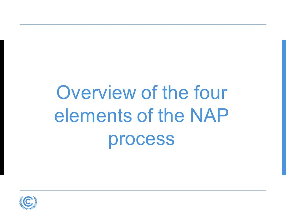Overview of the four elements of the NAP process