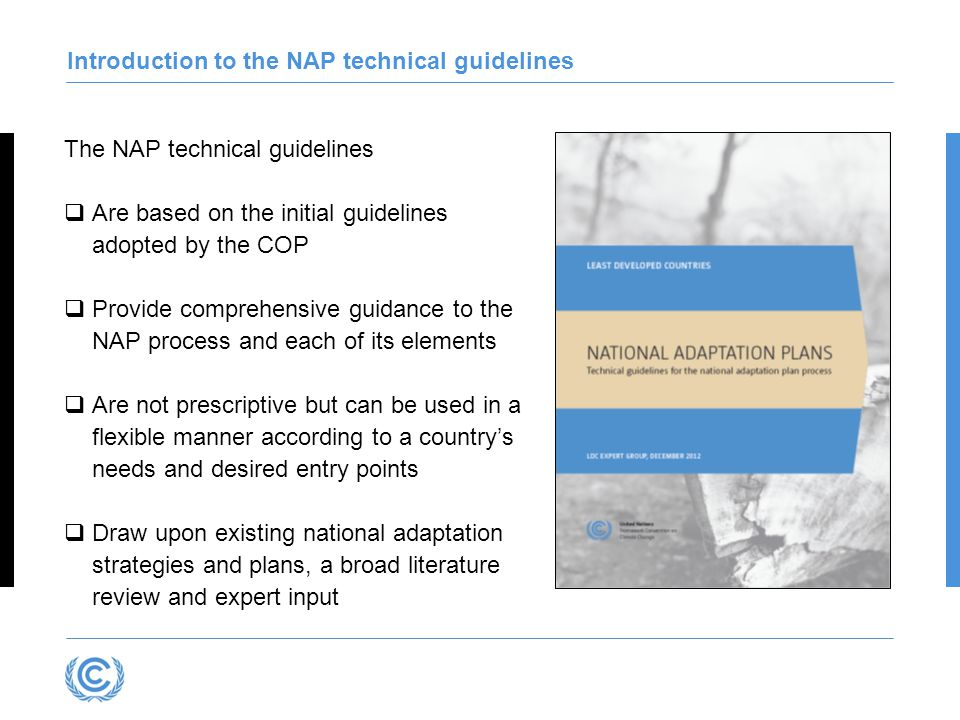 Introduction to the NAP technical guidelines The NAP technical guidelines  Are based on the initial guidelines adopted by the COP  Provide comprehensive guidance to the NAP process and each of its elements  Are not prescriptive but can be used in a flexible manner according to a country's needs and desired entry points  Draw upon existing national adaptation strategies and plans, a broad literature review and expert input