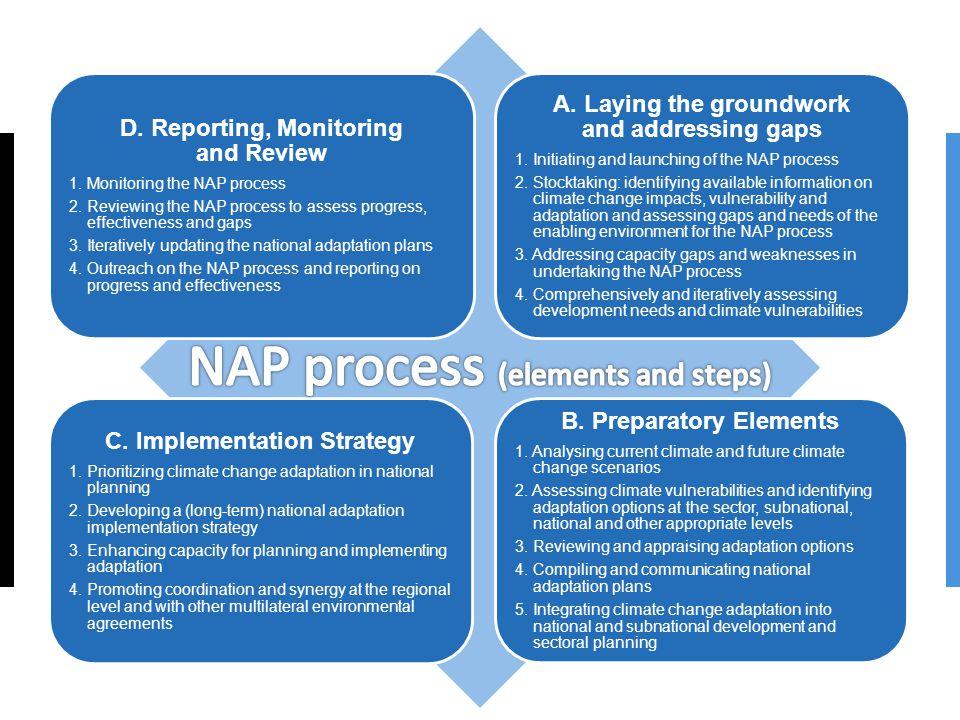 D. Reporting, Monitoring and Review 1. Monitoring the NAP process 2.