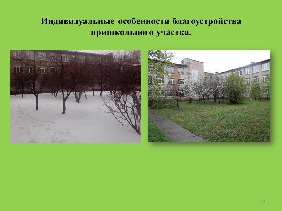 Индивидуальные особенности благоустройства пришкольного участка. 13