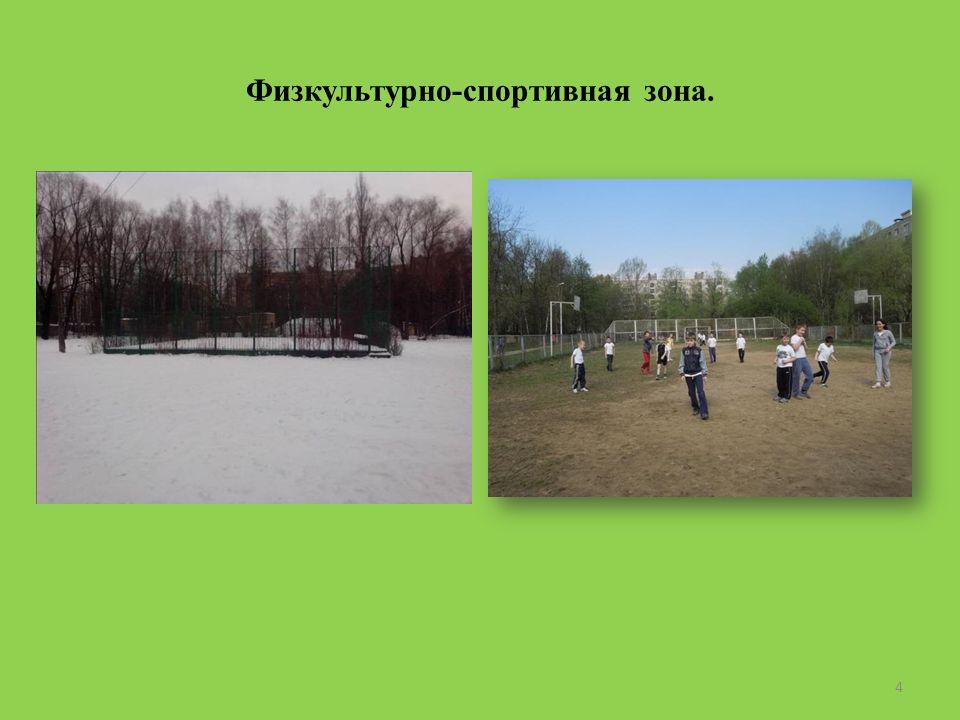 Физкультурно-спортивная зона. 4