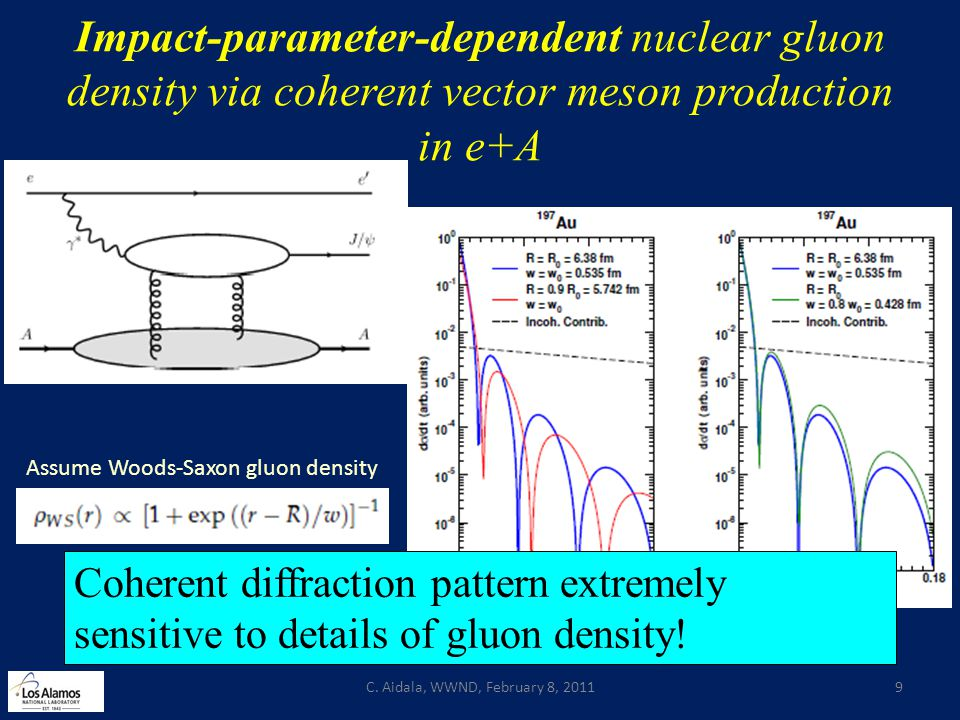Impact-parameter-dependent nuclear gluon density via coherent vector meson production in e+A C. Aidala, WWND, February 8, 20119 Assume Woods-Saxon glu