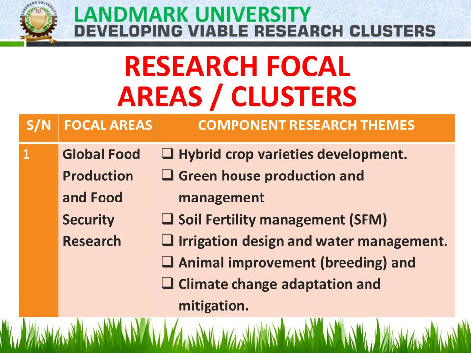 RESEARCH FOCAL AREAS / CLUSTERS S/NFOCAL AREASCOMPONENT RESEARCH THEMES 1Global Food Production and Food Security Research  Hybrid crop varieties development.