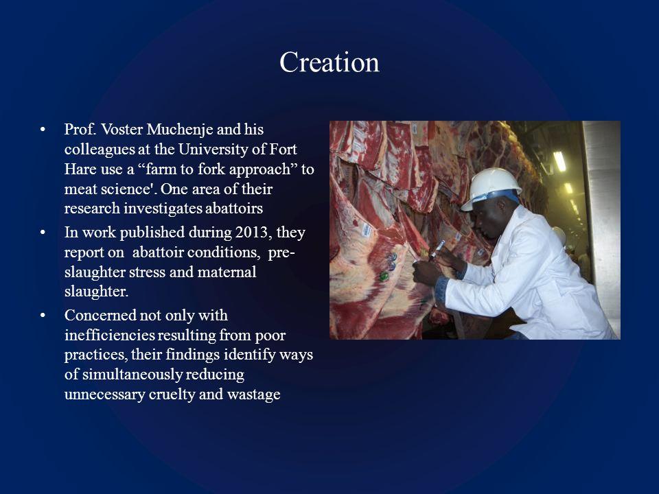 Creation Prof.