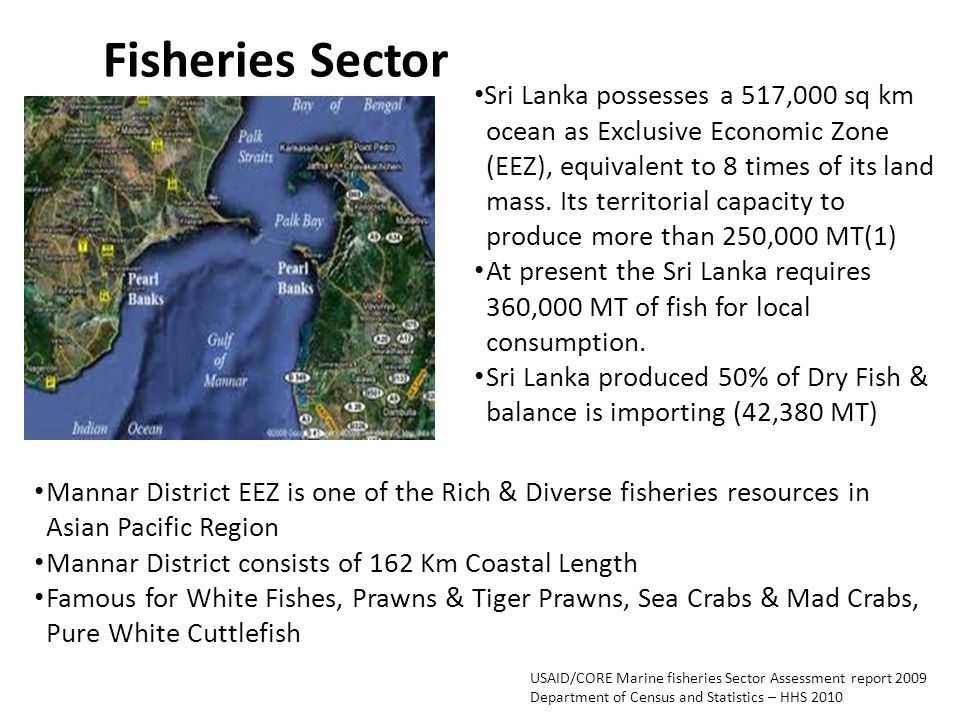 Fisheries Sector Sri Lanka possesses a 517,000 sq km ocean as Exclusive Economic Zone (EEZ), equivalent to 8 times of its land mass.