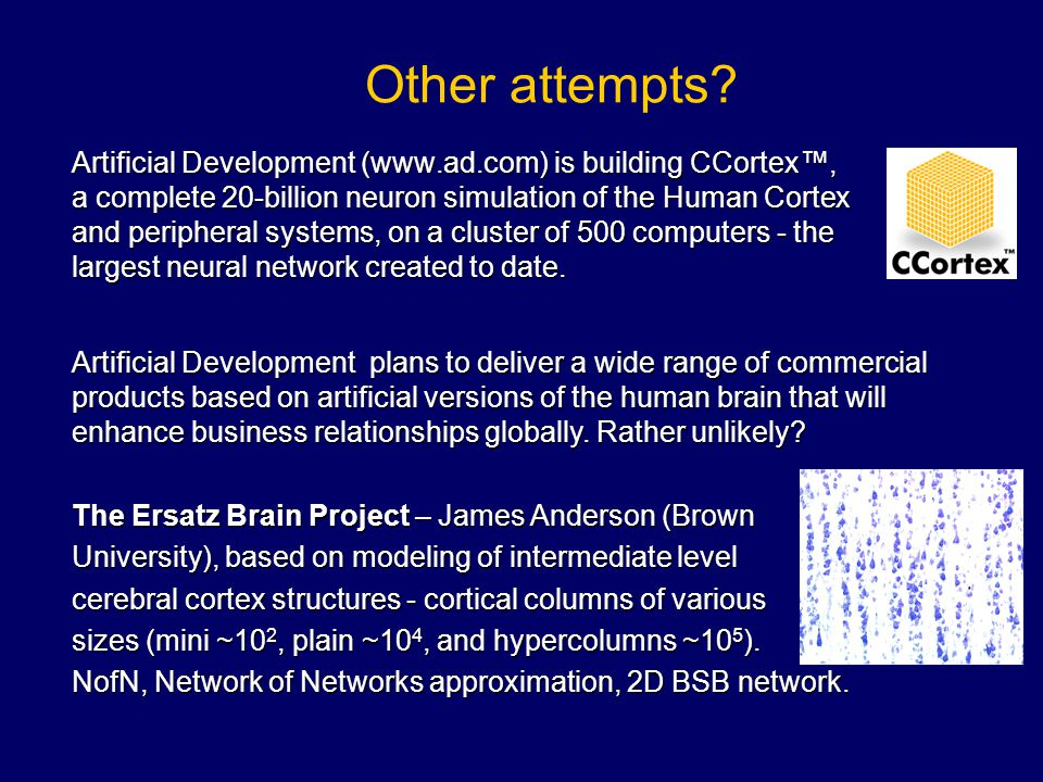 Other attempts? Artificial Development (www.ad.com) is building CCortex™, a complete 20-billion neuron simulation of the Human Cortex and peripheral s
