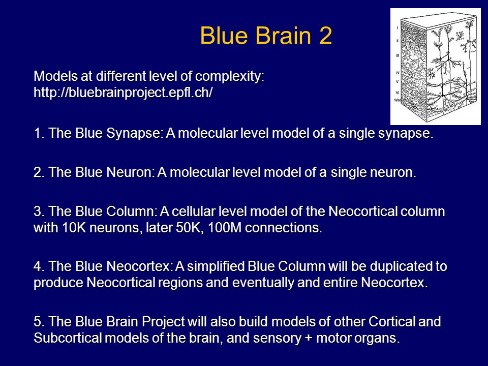 Blue Brain 2 Models at different level of complexity: http://bluebrainproject.epfl.ch/ 1. The Blue Synapse: A molecular level model of a single synaps