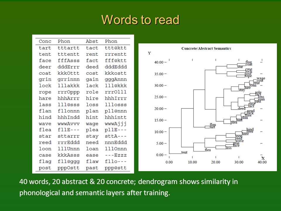 Words to read 40 words, 20 abstract & 20 concrete; dendrogram shows similarity in phonological and semantic layers after training.