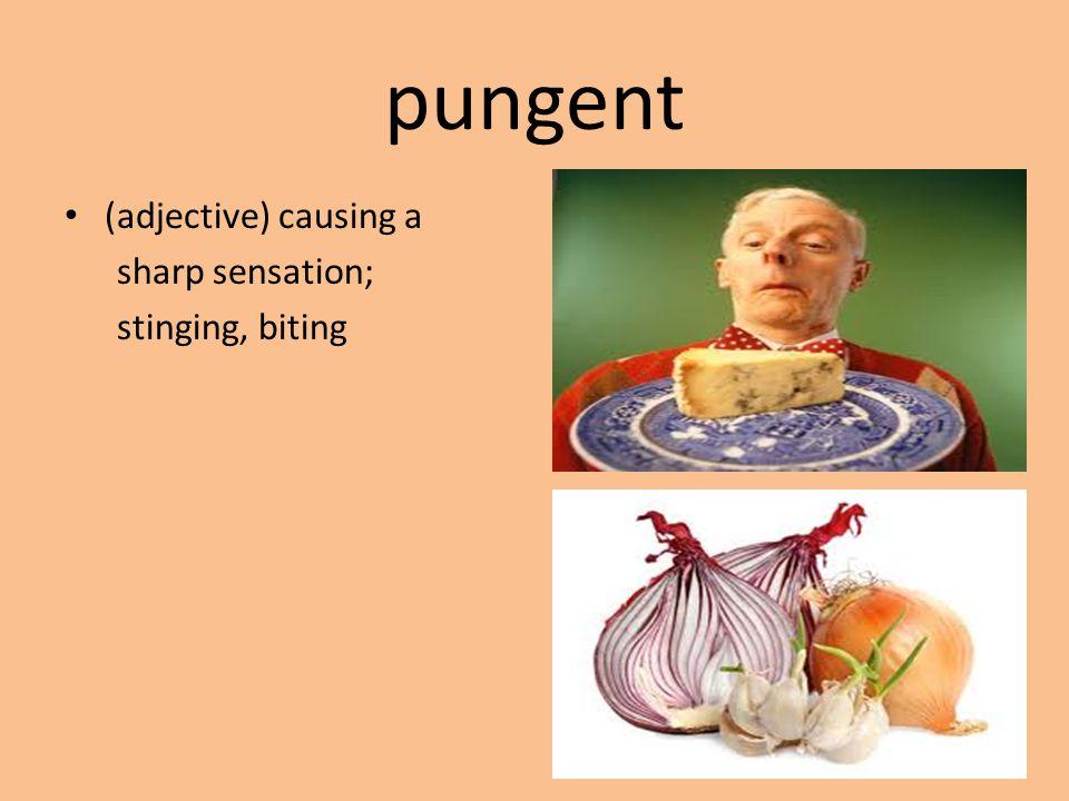 pungent (adjective) causing a sharp sensation; stinging, biting