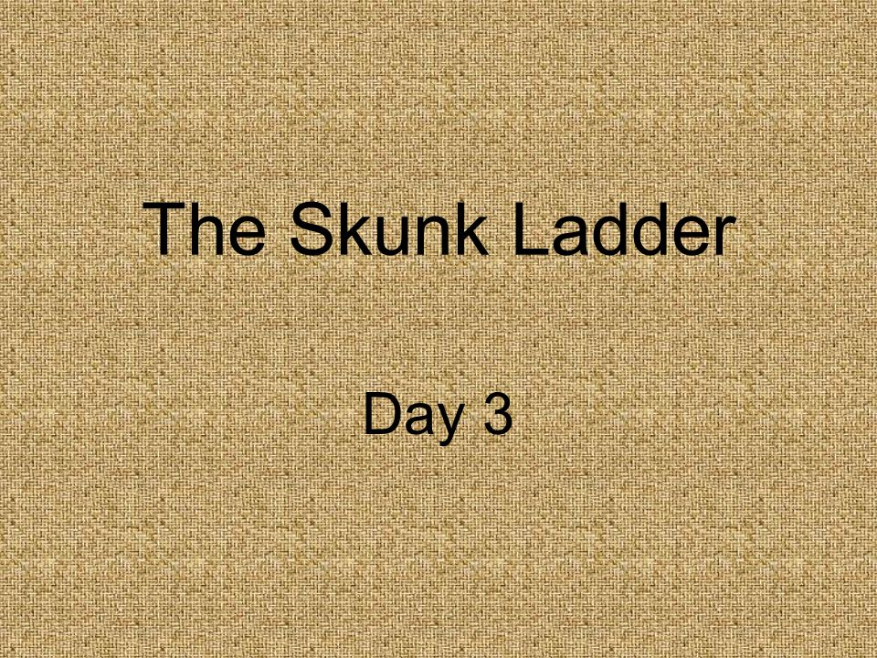The Skunk Ladder Day 3