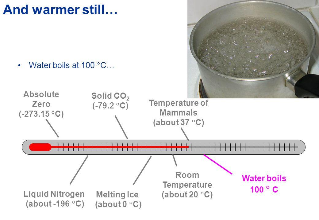 The Body Temperature of Animals AnimalTemperature (  C ) Range (  C ) Horse38.0  0.5 Dog38.2  1.0 Cat38.5  0.7 Whale37.0  .