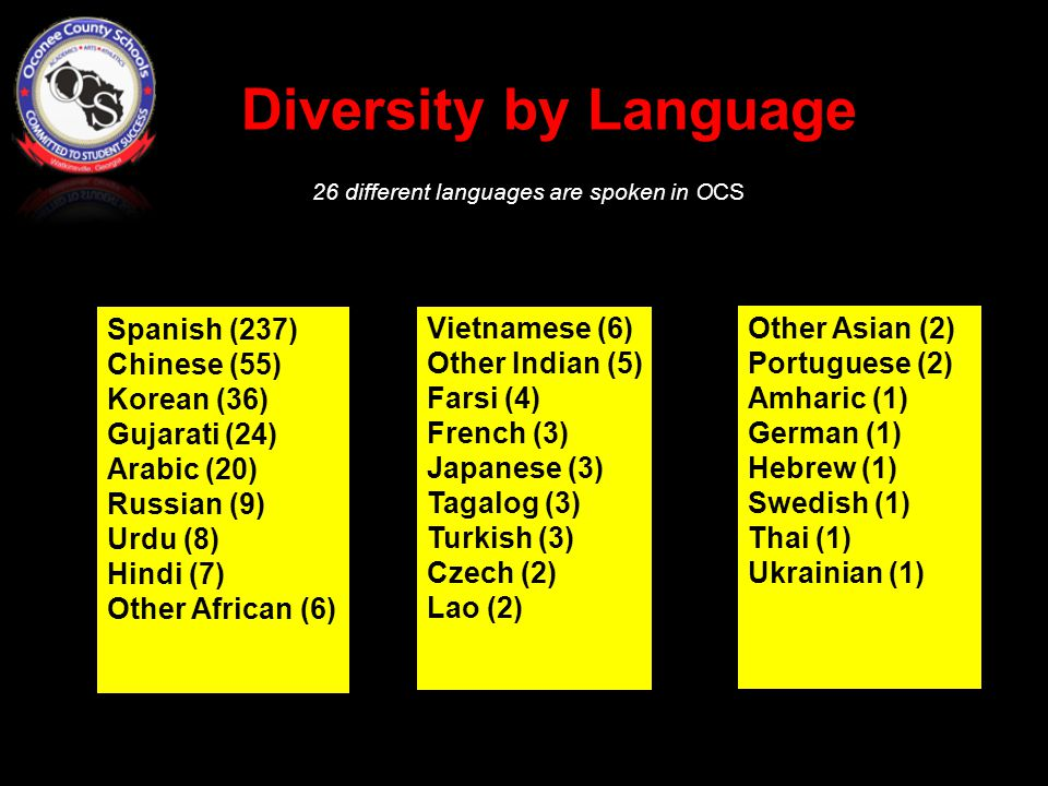 Diversity by Language 26 different languages are spoken in OCS Spanish (237) Chinese (55) Korean (36) Gujarati (24) Arabic (20) Russian (9) Urdu (8) Hindi (7) Other African (6) Vietnamese (6) Other Indian (5) Farsi (4) French (3) Japanese (3) Tagalog (3) Turkish (3) Czech (2) Lao (2) Other Asian (2) Portuguese (2) Amharic (1) German (1) Hebrew (1) Swedish (1) Thai (1) Ukrainian (1)