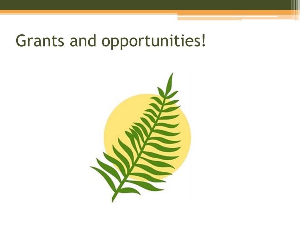Grants and opportunities!