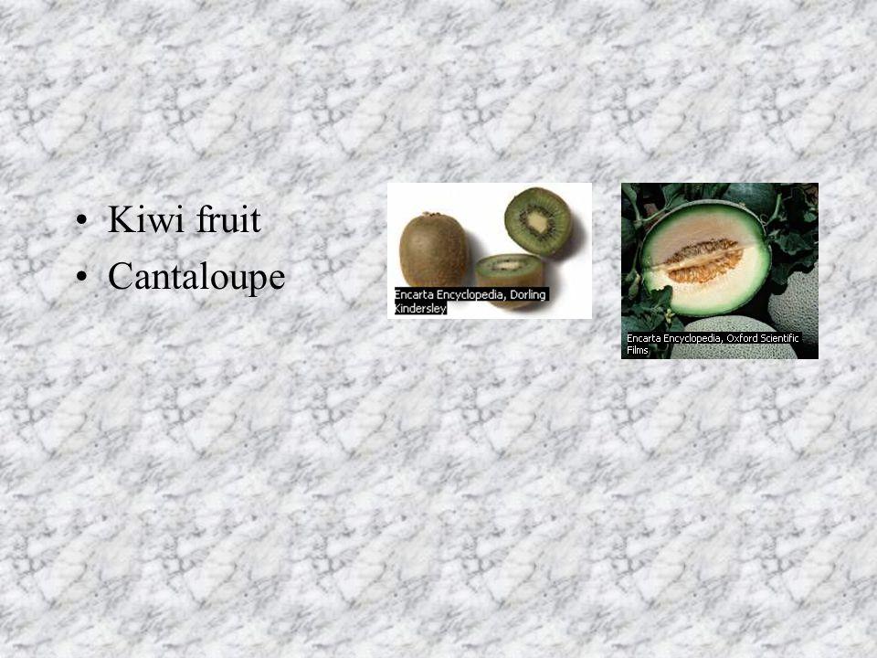 Kiwi fruit Cantaloupe