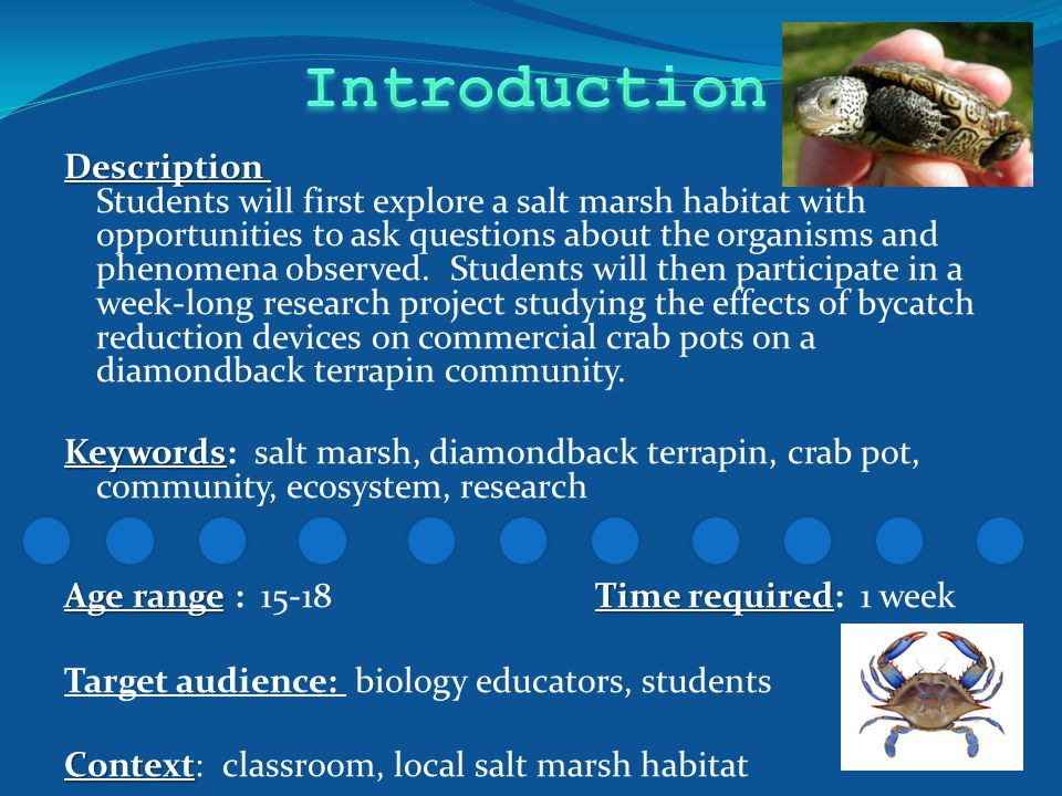 Description Description Students will first explore a salt marsh habitat with opportunities to ask questions about the organisms and phenomena observed.