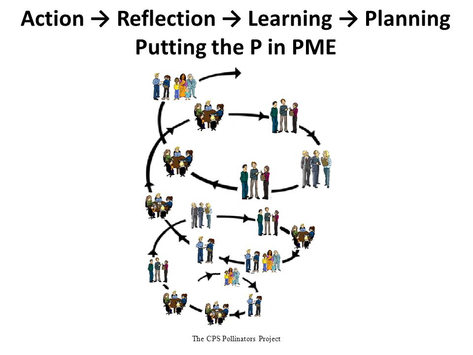 The CPS Pollinators Project Action → Reflection → Learning → Planning Putting the P in PME