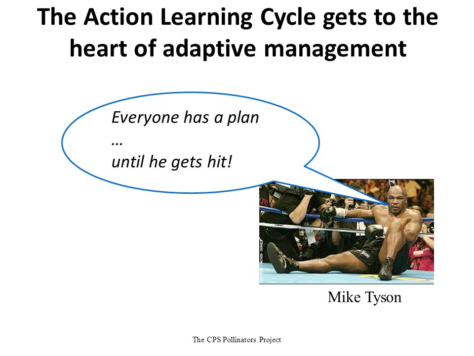 Mike Tyson The CPS Pollinators Project The Action Learning Cycle gets to the heart of adaptive management Everyone has a plan … until he gets hit!