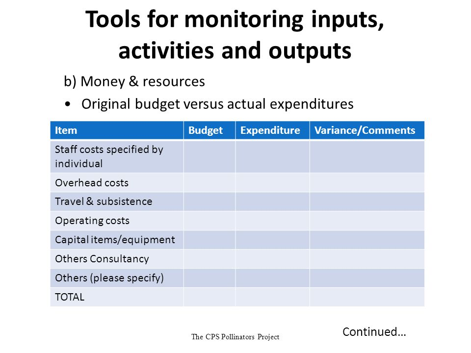 The CPS Pollinators Project Tools for monitoring inputs, activities and outputs b) Money & resources Original budget versus actual expenditures ItemBu