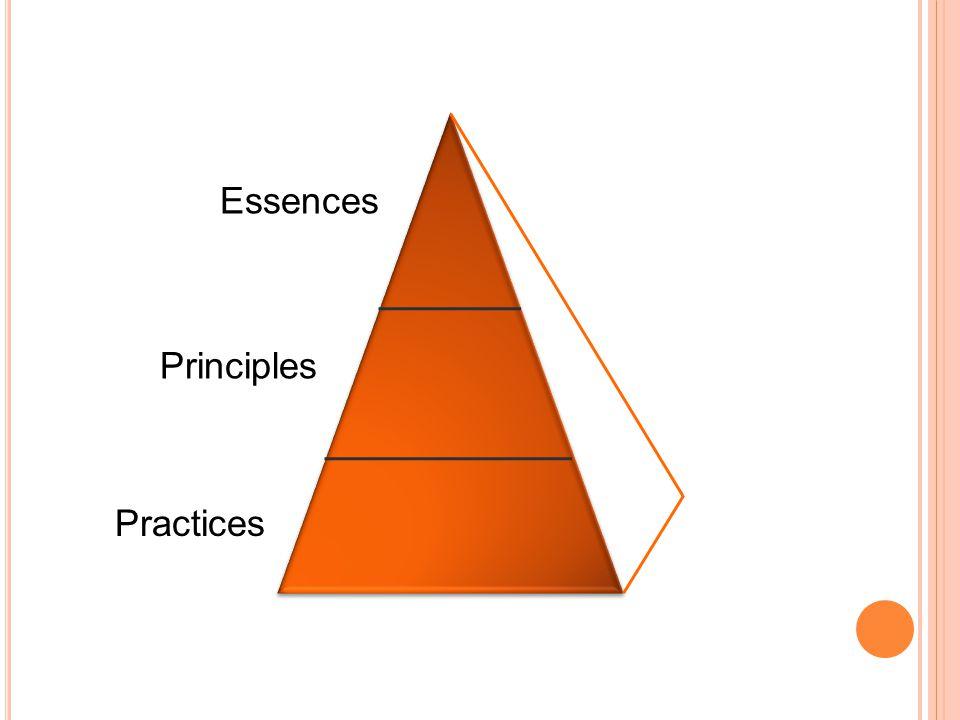 Practices Principles Essences
