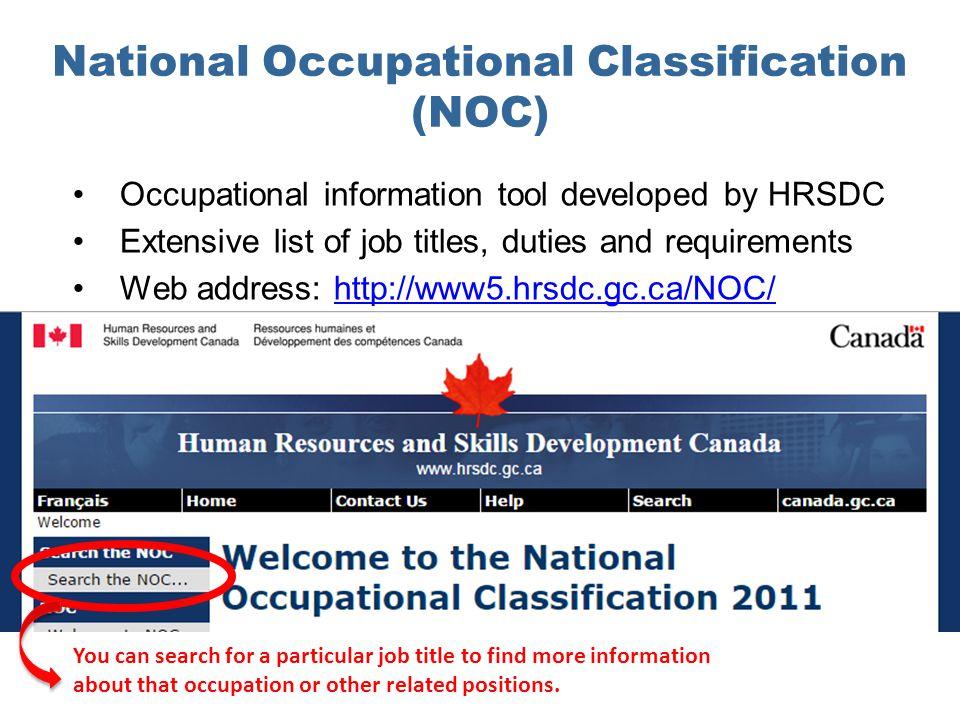 National Occupational Classification (NOC) Occupational information tool developed by HRSDC Extensive list of job titles, duties and requirements Web address: http://www5.hrsdc.gc.ca/NOC/http://www5.hrsdc.gc.ca/NOC/ You can search for a particular job title to find more information about that occupation or other related positions.