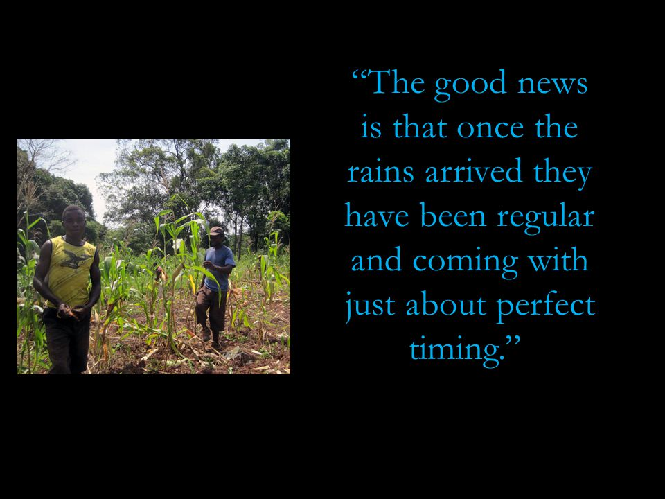 """""""The good news is that once the rains arrived they have been regular and coming with just about perfect timing."""""""