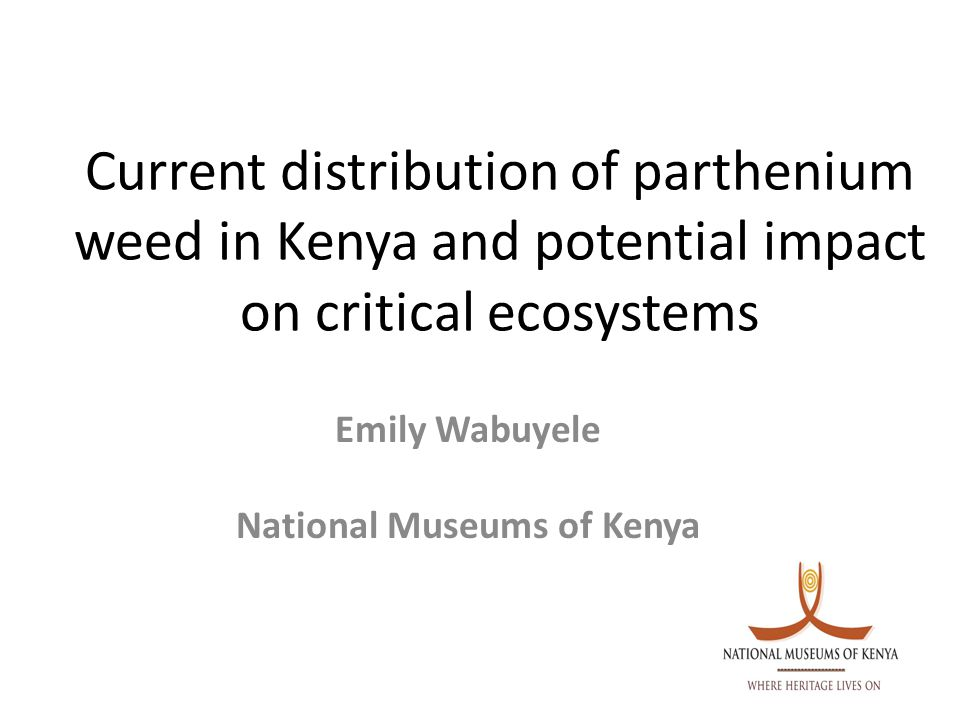 Conclusions and recommendations Documentation accomplished in this research is an important beginning for work on management Lack of knowledge on potential impact of parthenium dangerously predisposes Kenyan populace to social-economic risks Need to consolidate knowledge of parthenium regionally/globally and embark on tackling the next level of action:-management