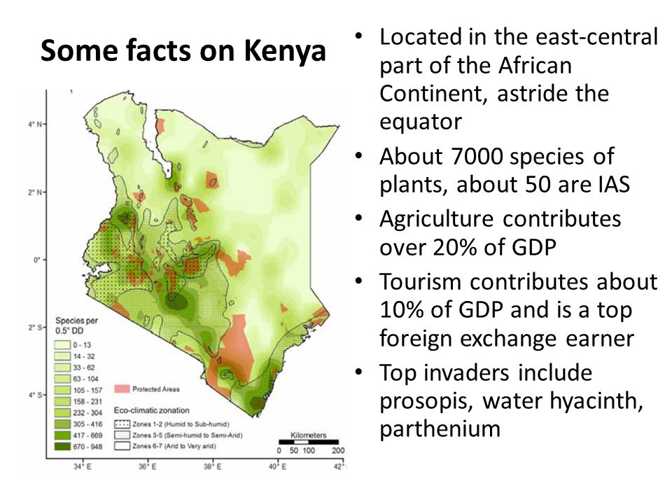 Rationale for surveys Kenya: Status of knowledge Parthenium first appeared in the mid 1970s Very little was known on actual distribution and extent of invasion by 2009