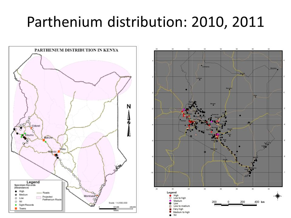 Parthenium distribution: 2010, 2011