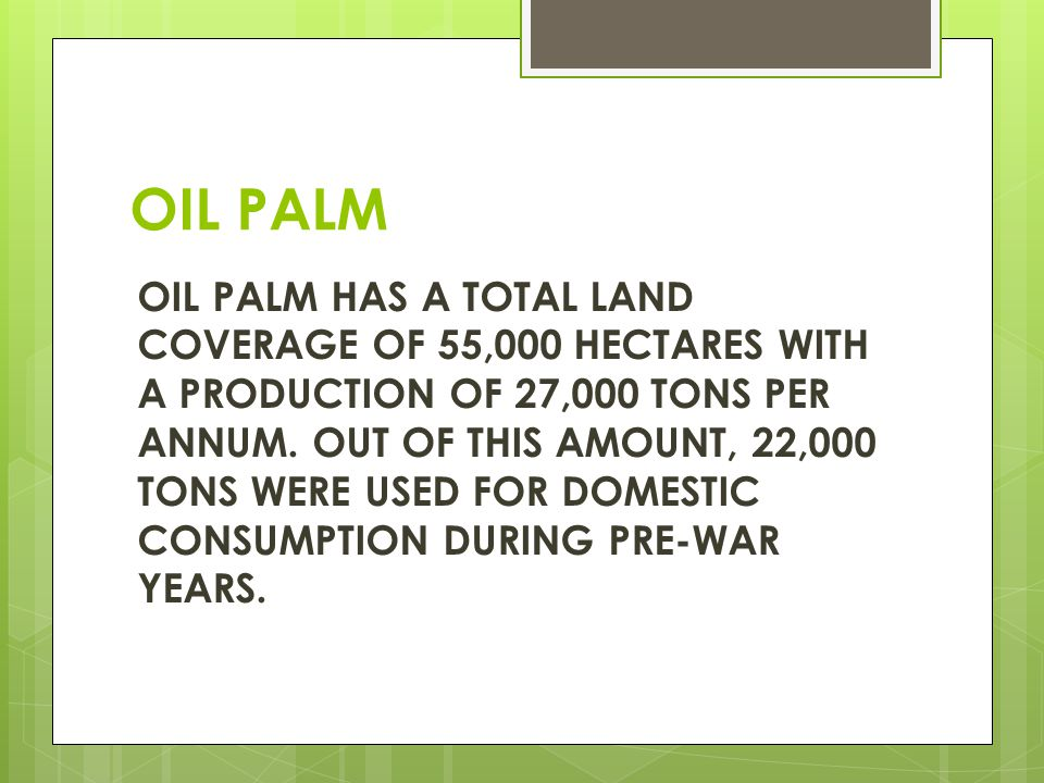 OIL PALM OIL PALM HAS A TOTAL LAND COVERAGE OF 55,000 HECTARES WITH A PRODUCTION OF 27,000 TONS PER ANNUM.