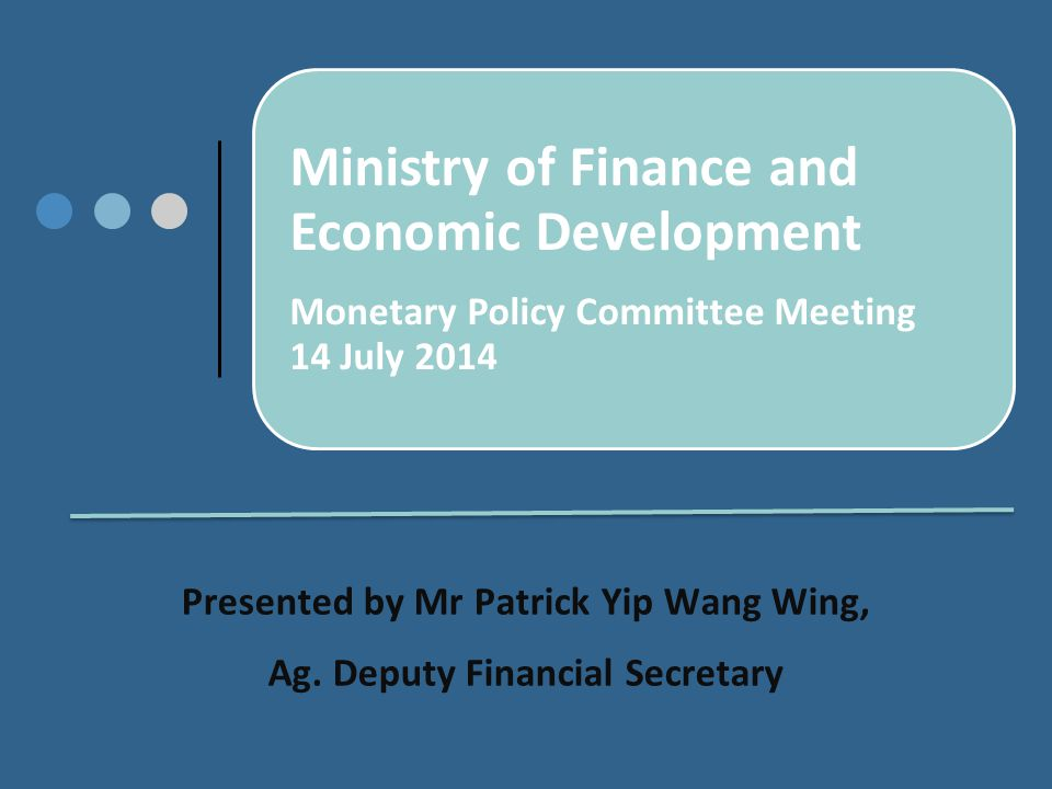 Ministry of Finance and Economic Development Monetary Policy Committee Meeting 14 July 2014 Presented by Mr Patrick Yip Wang Wing, Ag.