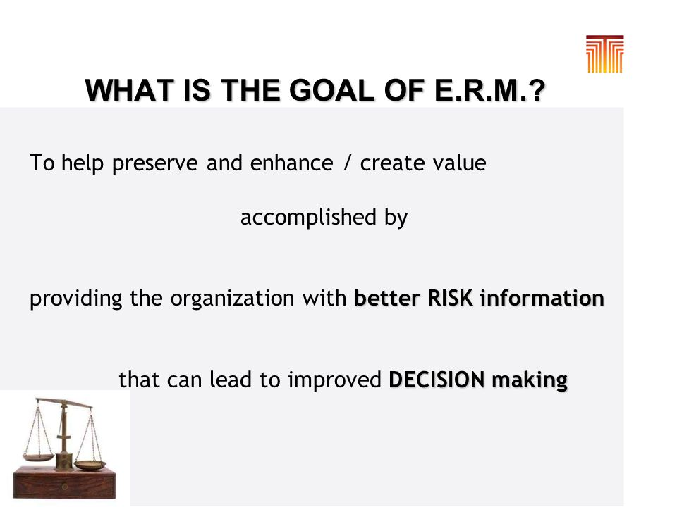 WHAT IS THE GOAL OF E.R.M..