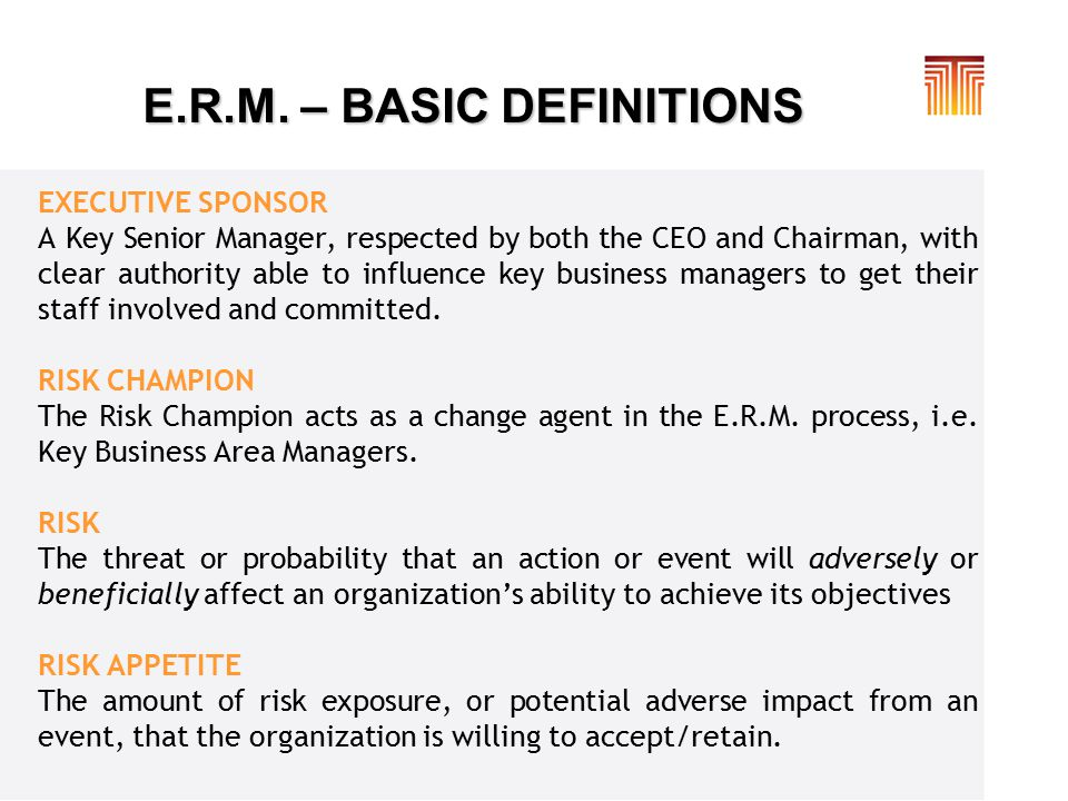 E.R.M. – BASIC DEFINITIONS EXECUTIVE SPONSOR A Key Senior Manager, respected by both the CEO and Chairman, with clear authority able to influence key