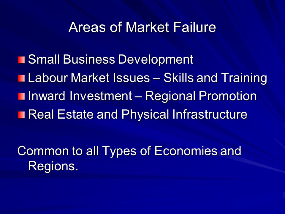 Areas of Market Failure Small Business Development Labour Market Issues – Skills and Training Inward Investment – Regional Promotion Real Estate and Physical Infrastructure Common to all Types of Economies and Regions.
