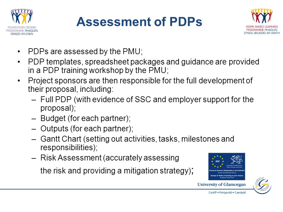 Assessment of PDPs PDPs are assessed by the PMU; PDP templates, spreadsheet packages and guidance are provided in a PDP training workshop by the PMU;