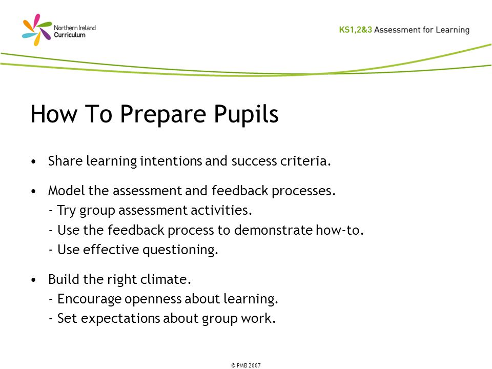 © PMB 2007 How To Prepare Pupils Share learning intentions and success criteria.