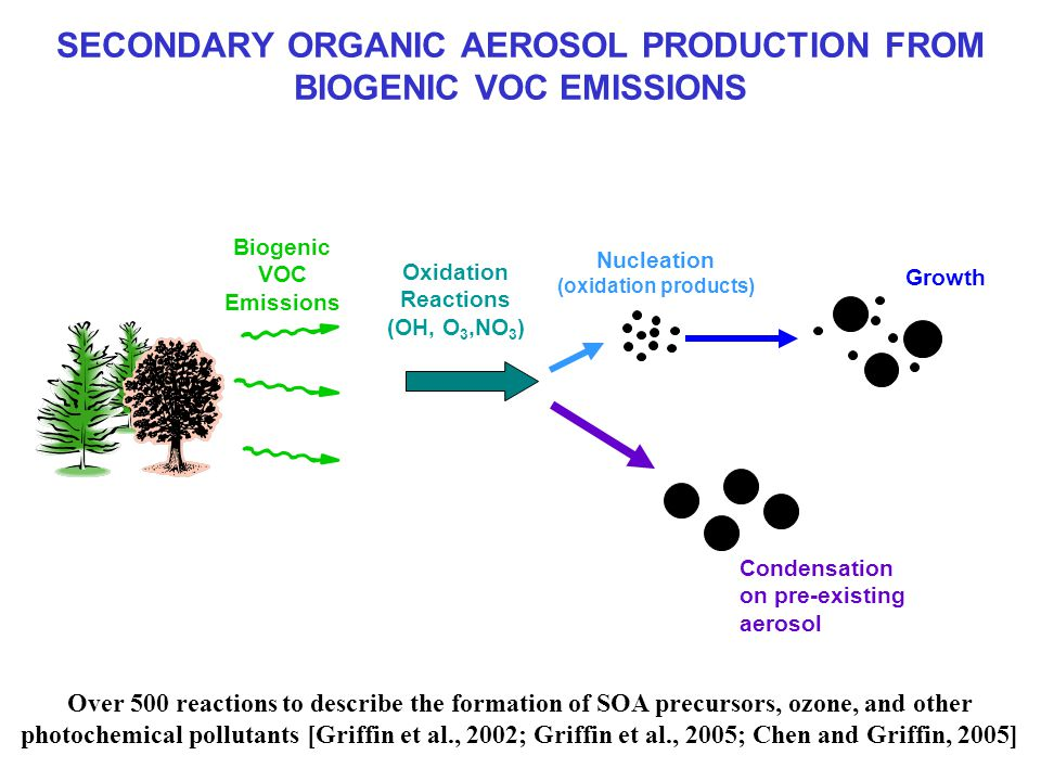 SECONDARY ORGANIC AEROSOL PRODUCTION FROM BIOGENIC VOC EMISSIONS Biogenic VOC Emissions Oxidation Reactions (OH, O 3,NO 3 ) Nucleation (oxidation products) Growth Condensation on pre-existing aerosol Over 500 reactions to describe the formation of SOA precursors, ozone, and other photochemical pollutants [Griffin et al., 2002; Griffin et al., 2005; Chen and Griffin, 2005]