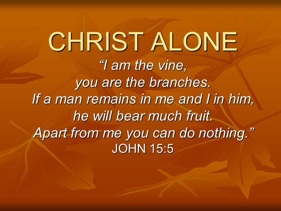 """CHRIST ALONE """"I am the vine, you are the branches. If a man remains in me and I in him, he will bear much fruit. Apart from me you can do nothing."""" JO"""