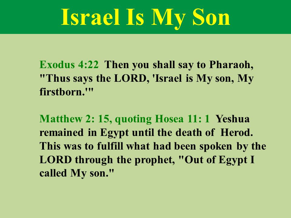 Israel Is My Son Exodus 4:22 Then you shall say to Pharaoh, Thus says the LORD, Israel is My son, My firstborn. Matthew 2: 15, quoting Hosea 11: 1 Yeshua remained in Egypt until the death of Herod.